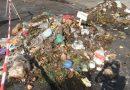 Bioabfallverwertung